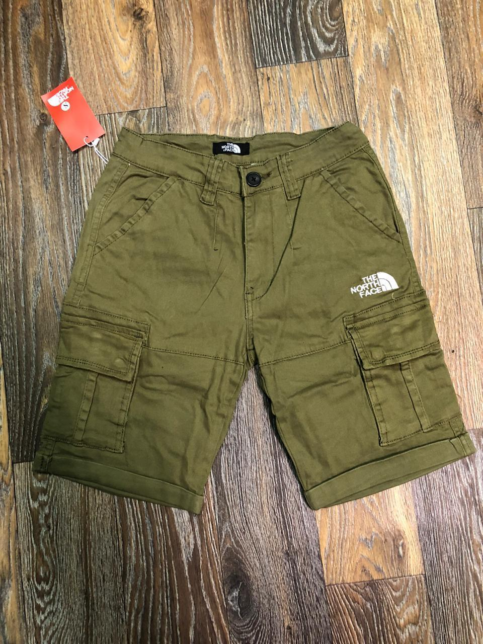 Шорты The North Face 993248green