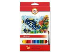 Набор школьных акварельных карандашей FISH 36 цветов в картонной коробке
