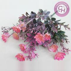Суккулент кустовой цветочный, 5 веток, 39 см.