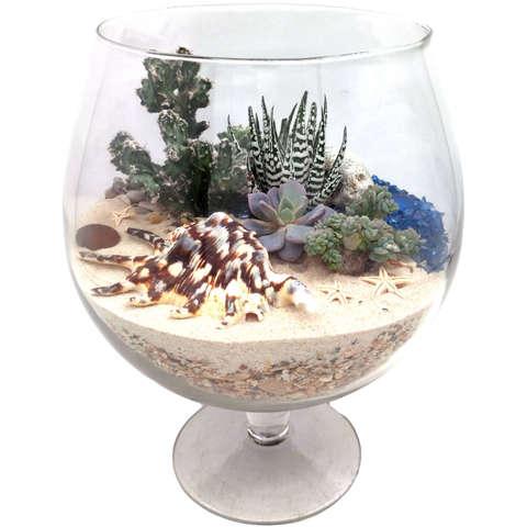 Океан - живая композиция из суккулентов в стекле