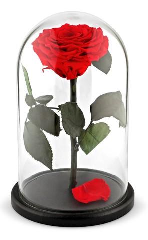 Вечная роза в стеклянной колбе красная (Люкс)