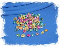 Цветные ракушки для творчества, поделок и рукоделия