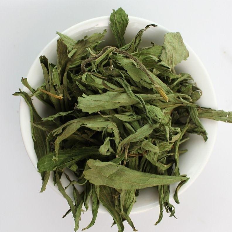 Травы Стевия лист stevia-04.jpg