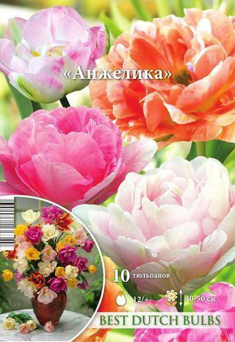 Тюльпан Анжелика смесь махровых поздних 12/+ 10шт