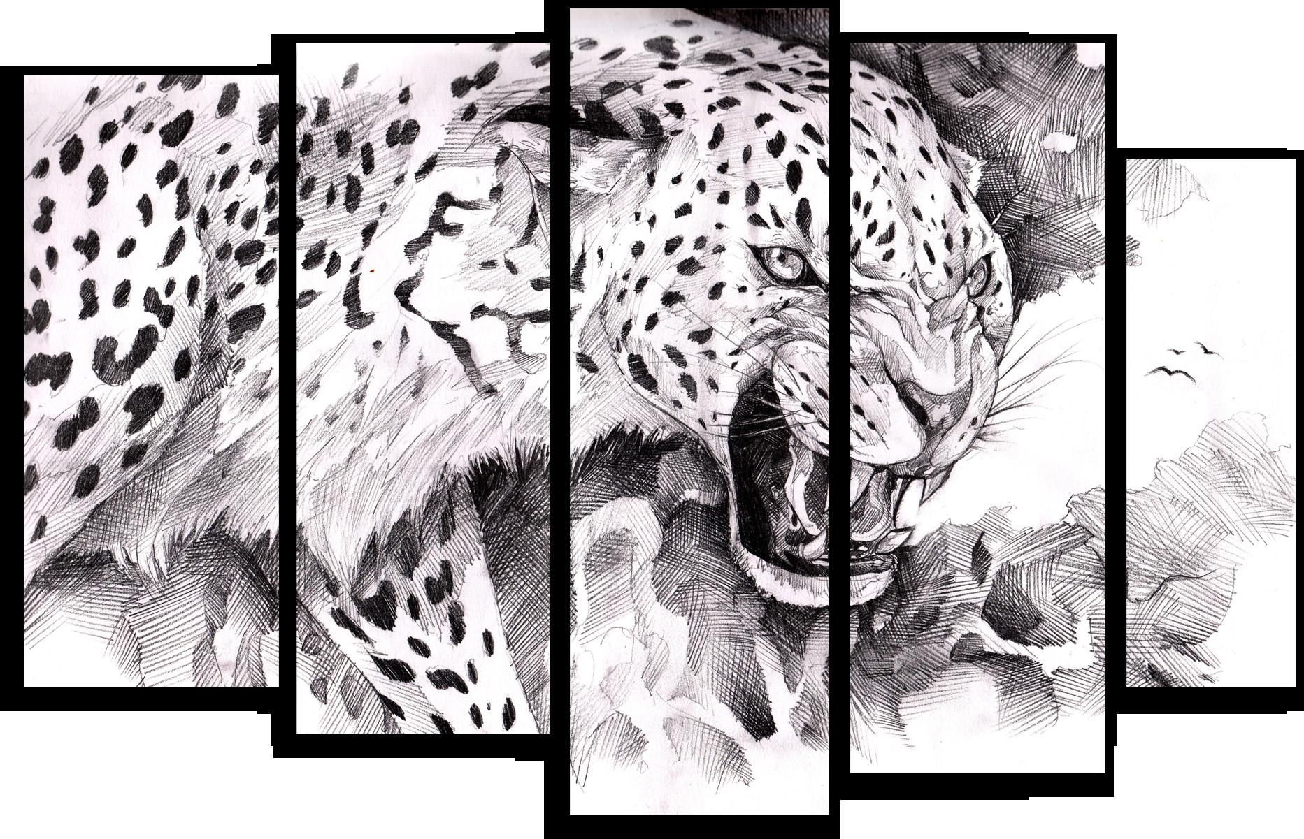 """Животные Модульная картина """"Черно-белый зверь"""" М462.png"""