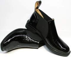 Стильные ботинки ботильоны женские на низком каблуке Ari Andano 721-2 Black Snake.