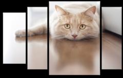 """Модульная картина """"Скучающая кошка"""""""