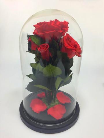 Вечная роза в стеклянной колбе куст красная (Элит)