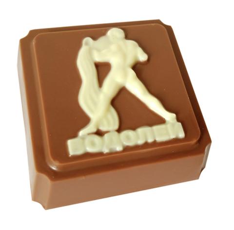 Пластиковая форма для шоколада ЗНАК ЗОДИАКА ВОДОЛЕЙ (65х65мм)