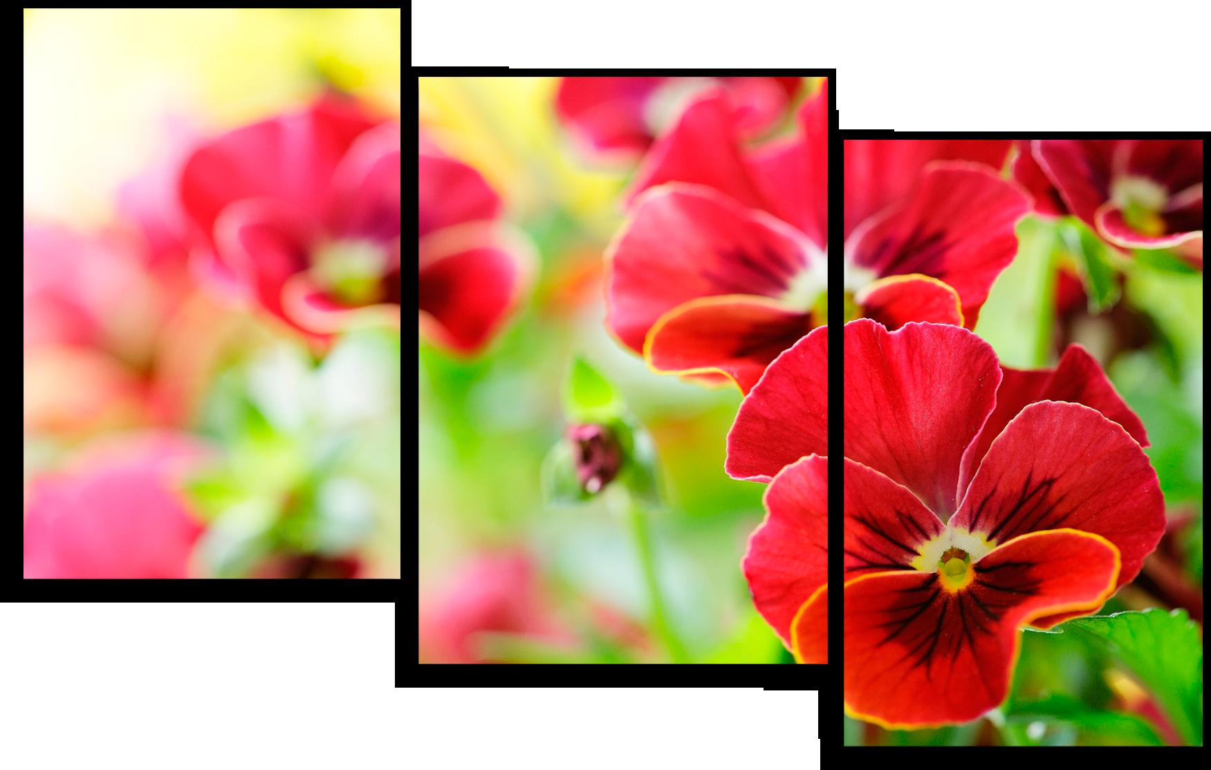 """Цветы Модульная картина """"Цветы анютины глазки """" М676.png"""