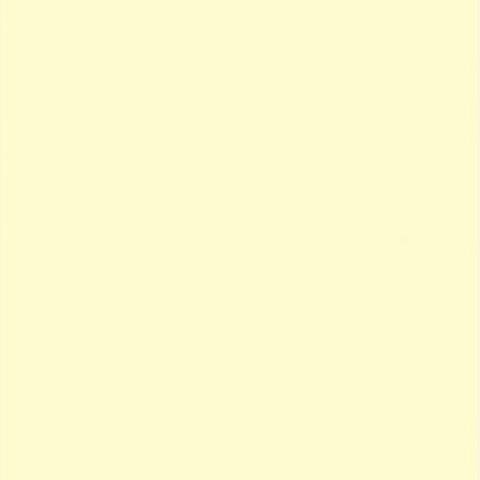 Фон бумажный FST 2,72x11 CREAM цвет шампанского 1039