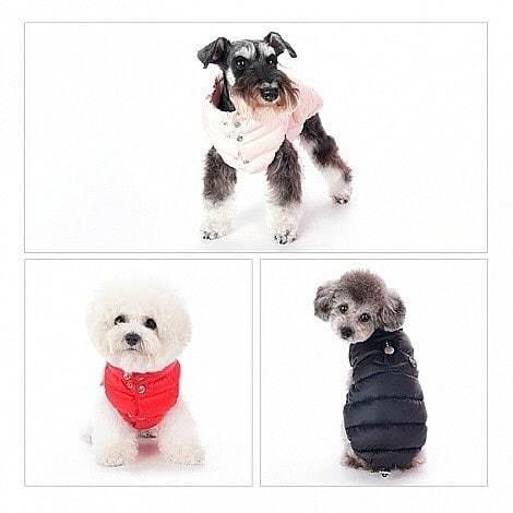 517 PA - Куртка для собак