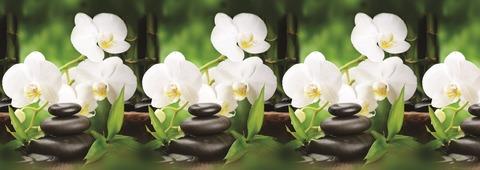 Белые орхидеи (термоперевод)