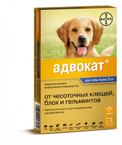 Адвокат для собак более 25  кг