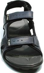 Модные сандали спортивные мужские Mi Lord 2066EKO Blue.