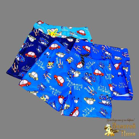 Плавки купальные мальчику (2-7) 210421-PL45071