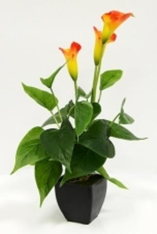 Цветок иск.Каллы в кашпо оранжевый 42см