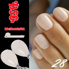 BSG №28 Романтика