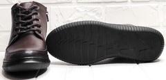 Женские кожаные ботинки кеды на толстой подошве Evromoda 535-2010 S.A. Dark Brown.