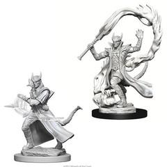 D&D Nolzur's Marvelous Miniatures - Male Tiefling Sorcerer