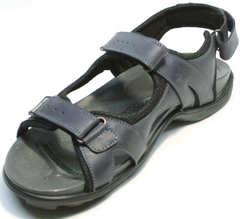 Спортивные мужские сандали для походов Mi Lord 2066EKO Blue.