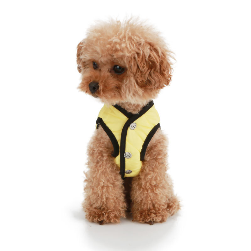 весенняя куртка для собаки