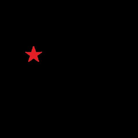 Наклейка На Берлин! (со звездой) (25x60 см)
