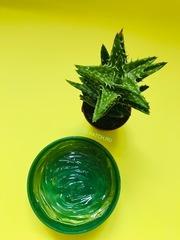 Многофункциональный смягчающий гель с экстрактом алоэ FarmStay Aloe Vera Moisture Soothing Gel, 300 мл