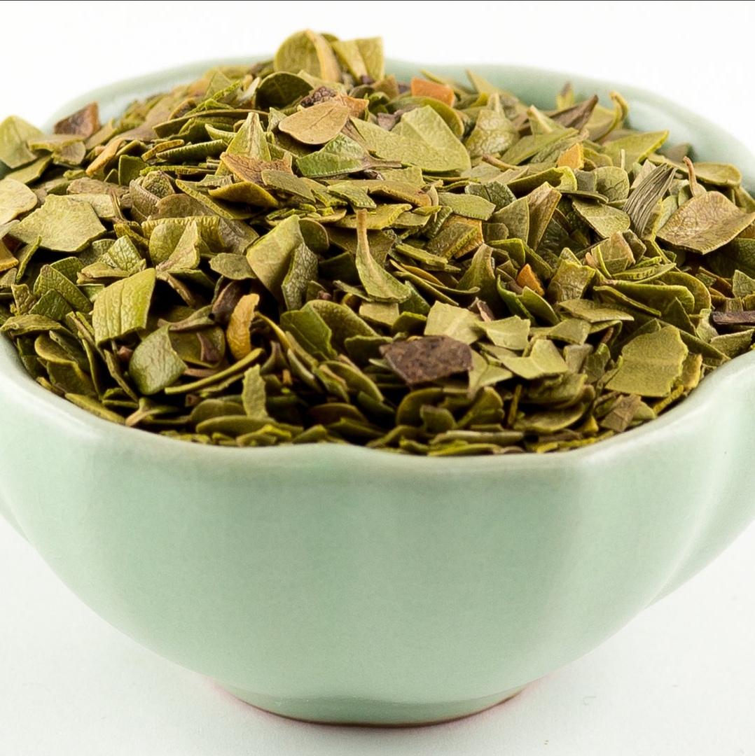 Травы Толокнянка, лист arctostaphylos-leaf-04.jpg