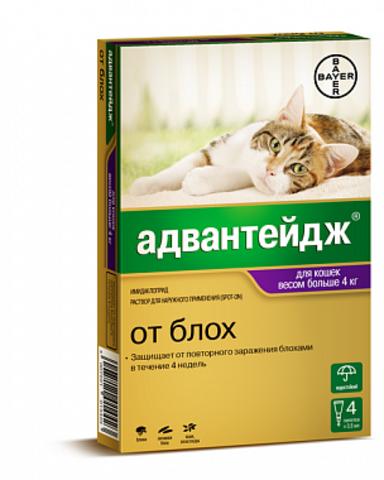 Адвантейдж для кошек более 4 кг