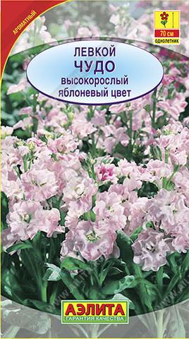 Левкой высокорослый Чудо яблоневый цвет Аэлита