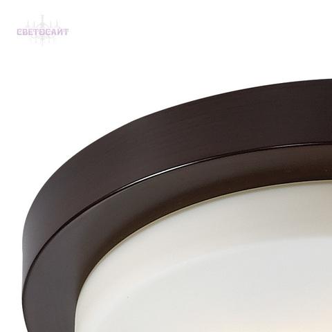 Настенно-потолочный светильник влагозащищённый 2744/3C серии HOLGER