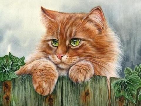 Алмазная Мозаика 20x30 Рыжий кот на заборе (арт. MTCH8230)