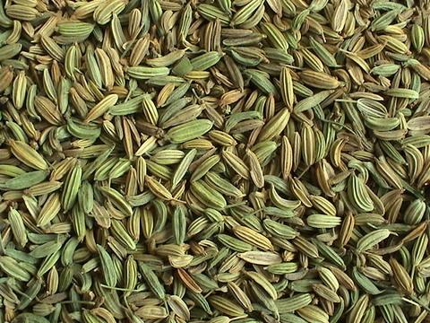 Фенхель семена