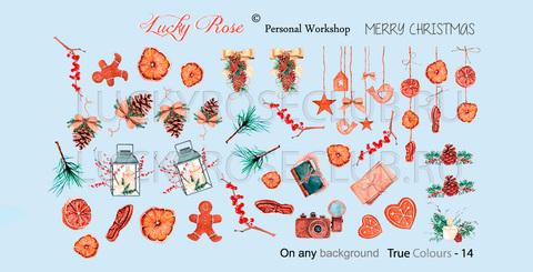Слайдер Lucky Rose True Colour-0014