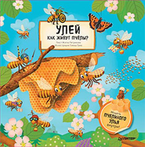 Улей. Как живут пчёлы?