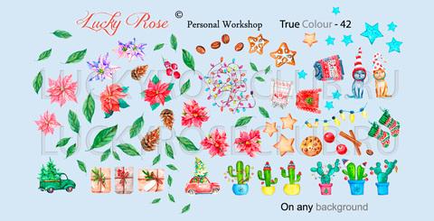 Слайдер Lucky Rose True Colour-0042