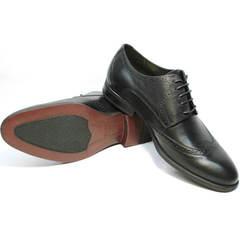 Броги дерби туфли мужские кожаные черные Ikos 1157-1 Classic Black.