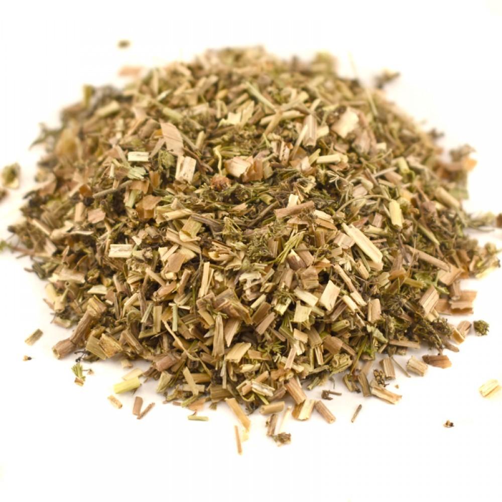 Травы Белена, лист hyoscyamus-leaf-05.jpg