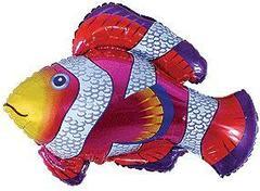 F Мини-фигура, Рыбка-Клоун, Фуше, 14