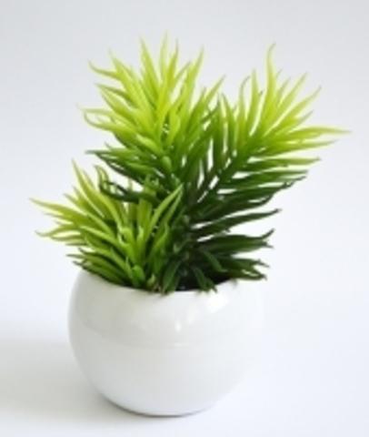 Растение иск.Суккулент Молочай в кашпо 18см
