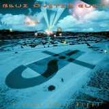 Blue Oyster Cult / A Long Day's Night (2LP)