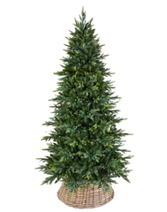Triumph tree ель Королевская стройная 1,55 м зеленая