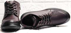 Кожаные сникерсы ботинки женские весна Evromoda 535-2010 S.A. Dark Brown.