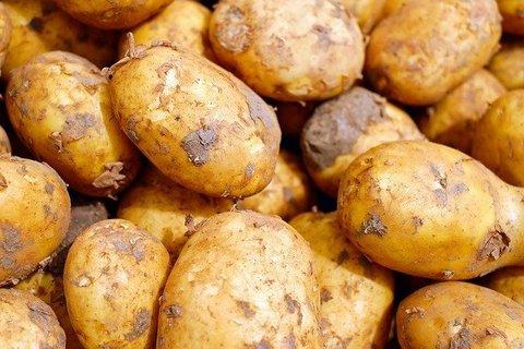 Беби-Картофель Молодой, 1 кг