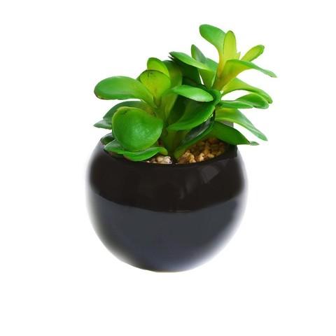 Растение иск.Суккулент Толстянка в кашпо 16см