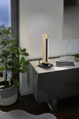Светодиодная настольная лампа диммируемая  Eglo CAMACHO 99295 4