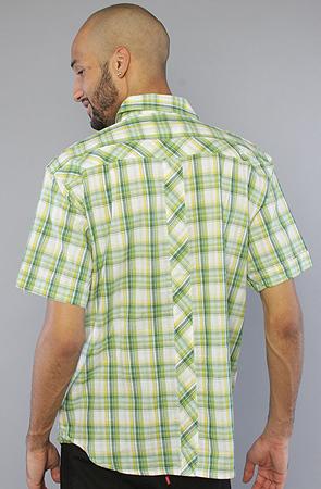 Рубашка зеленая в клетку фото сзади