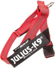 Шлейка для собак JULIUS-K9 Ремни Color & Gray IDC® 2 красный