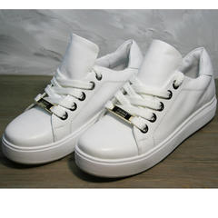 Кеды кожаные белые женские Molly shoes 557 Whate